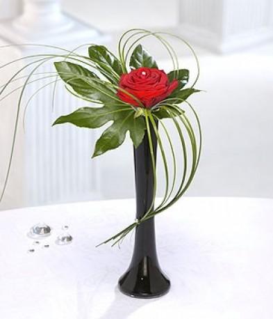 Single red rose in a vase